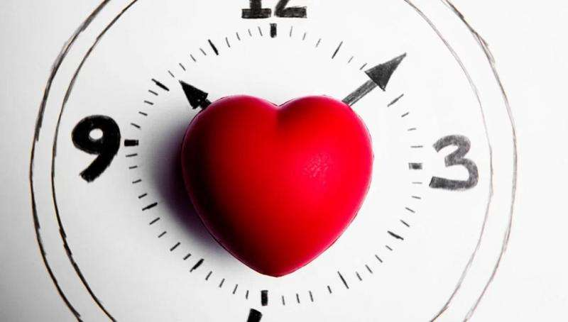 Texas A&M study shows saturated fats 'jet lag' body clocks, triggering metabolic disorders
