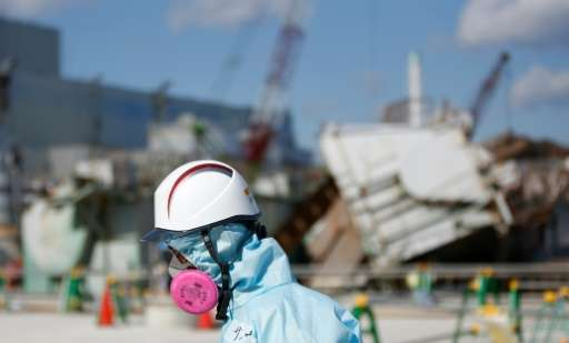 The 2011 earthquake and tsunami caused a meltdown at the Fukushima nuclear reactor and spread radiation over a wide area