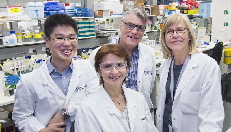 Tick-tock: Immune T cells know when their time's up