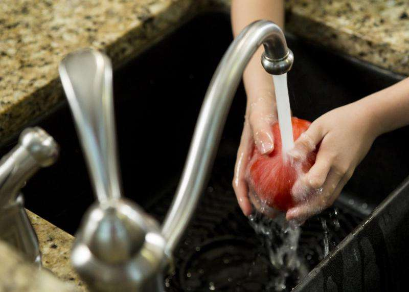 Tips for safe holiday meal preparation