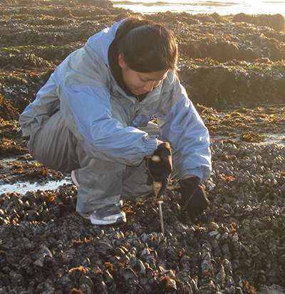 Toxins from freshwater algae found in San Francisco Bay shellfish