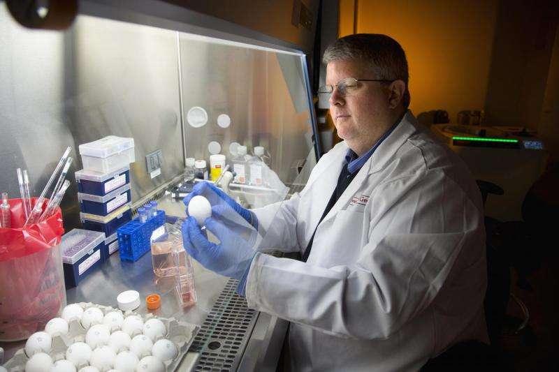 UGA, Sanofi Pasteur develop new vaccine for H1N1 influenza