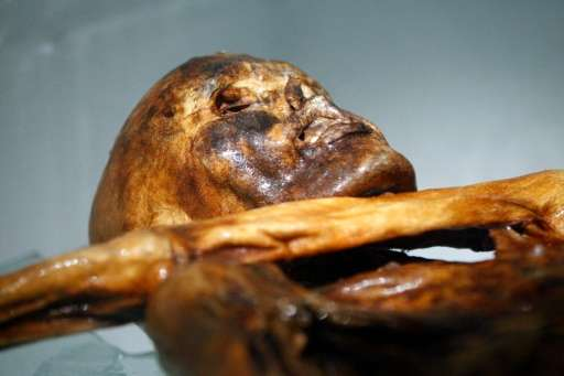 """Unlike other ancient mummies, Oetzi is """"damp"""", meaning there is still humidity in his cells and his body is untouched"""
