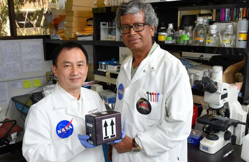 USC scientists to send fungi into orbit in quest to develop space meds