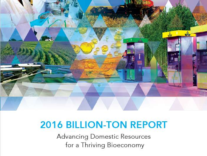 US holds potential to produce billion tons of biomass, support bioeconomy