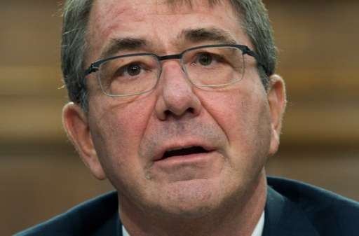 US Secretary of Defense Ashton Carter testifies before the House Appropriations Committee on Capitol Hill in Washington, DC, Feb