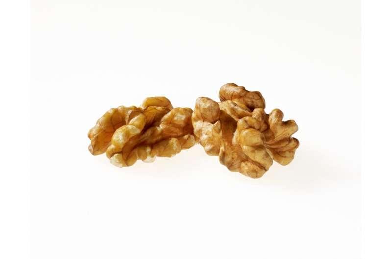 Walnuts may improve your colon health