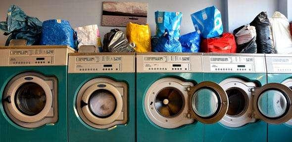 Wash cycle—making organs fit for transplantation