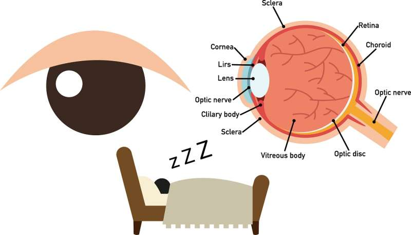 Why apnea patients are prone to suffer from glaucoma