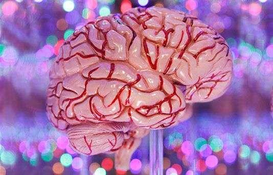 Women more severely affected by Alzheimer's than men