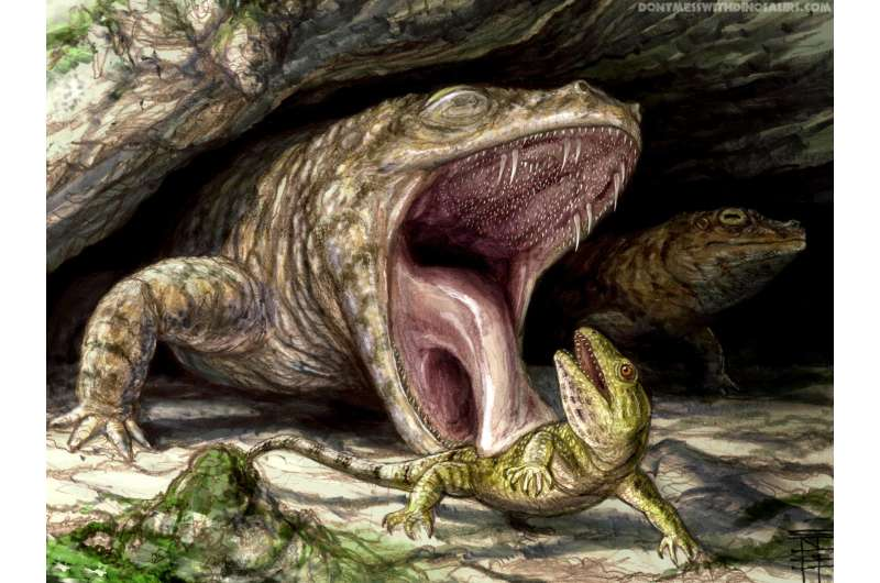 Ancient amphibian had mouthful of teeth ready to grab you: UTM research