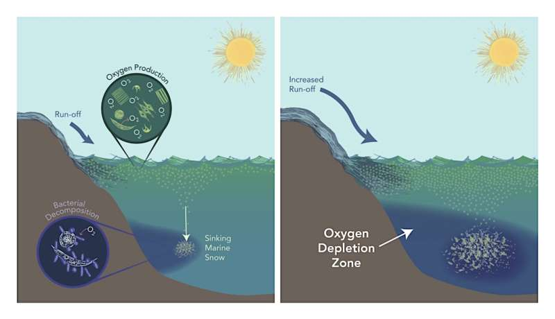 ASU graduate student leads study estimating oxygen loss in ancient global ocean