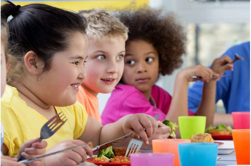 Childhood obesity levels are highest among South Asians
