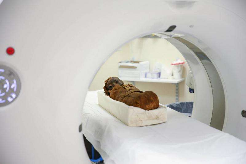 Clues to ancient past: baby mummy, dinosaur skulls scanned
