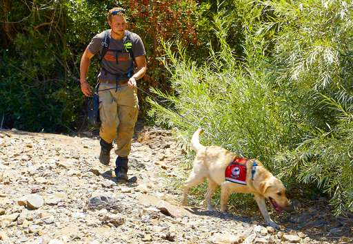 Dog helps sniff out invasive ants on California island