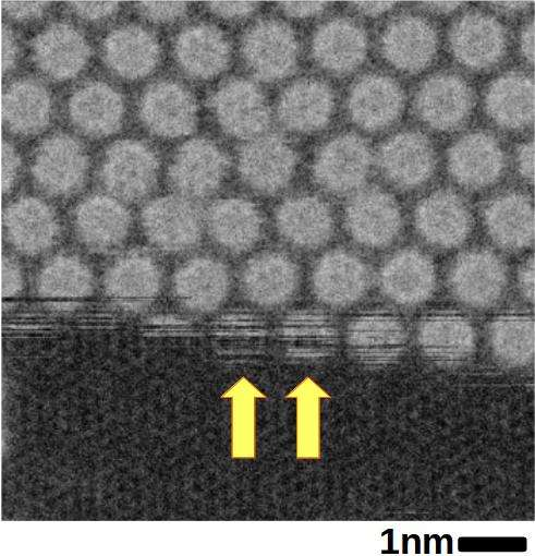 Graphene encapsulation provides unprecedented view of the diffusion and rotation of fullerene molecu