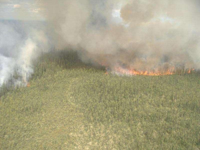 Lightning Sparking More Boreal Forest Fires