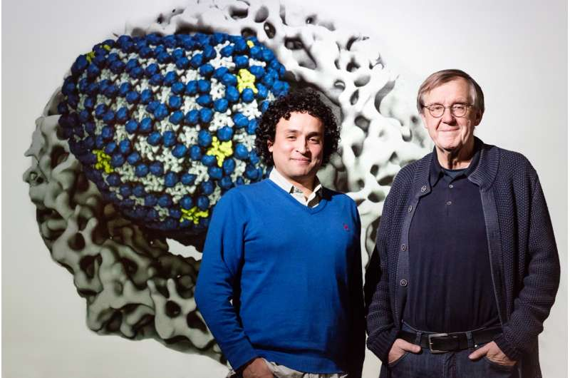 Massive simulation shows HIV capsid interacting with its environment