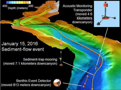 Multi-year submarine-canyon study challenges textbook theories about turbidity currents