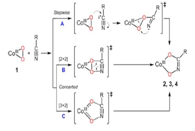 New Complex Reacting with Nitrile: A Key to Enable Down-regulation of Cancer Enzymes