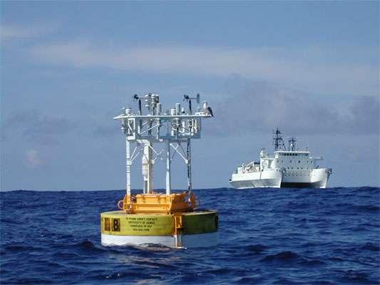 New gene catalog of ocean microbiome reveals surprises