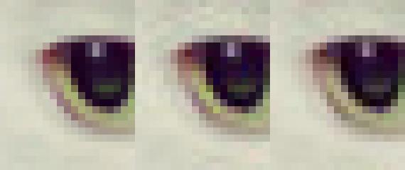 New JPEG encoder Guetzli sweetens image-heavy work tasks