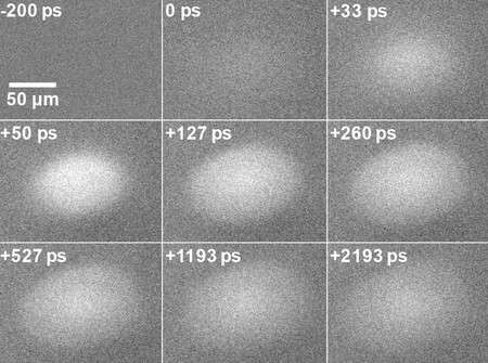 New study opens the door to solid-state devices that use excited electrons