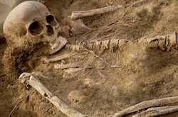 Prehistoric women's skeletons show impact of rigorous manual labour