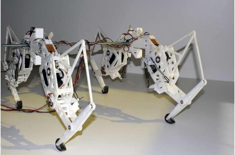 Researcher creates robotic cheetah