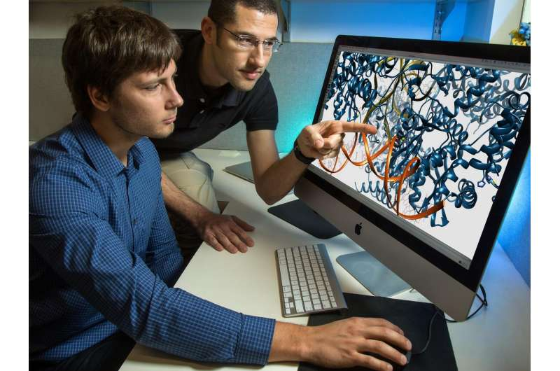 Salk scientists crack the structure of HIV machinery