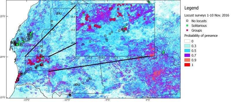 Satellites forewarn of locust plagues