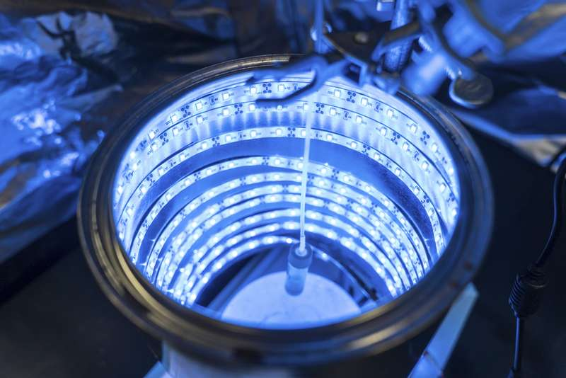 Scientist invents way to trigger artificial photosynthesis to clean air