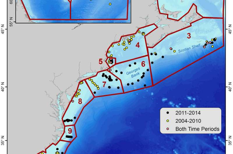 Shifting presence of North Atlantic right whales tracked with passive acoustics