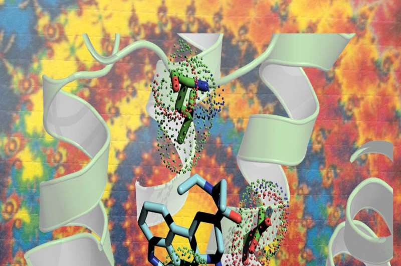 Structure of LSD and its receptor explains its potency