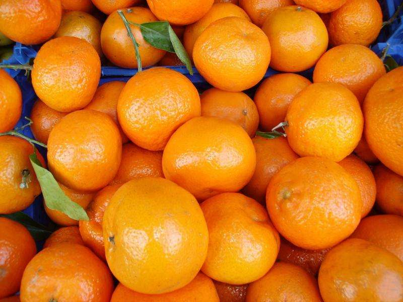 Wastewater cleaned thanks to a new adsorbent material made from fruit peels