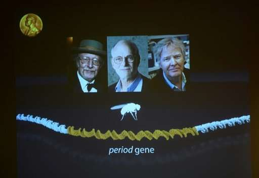 Winners of the 2017 Nobel Prize in Physiology or Medicine (L-R) Jeffrey C Hall, Michael Rosbash and Michael W Young are pictured