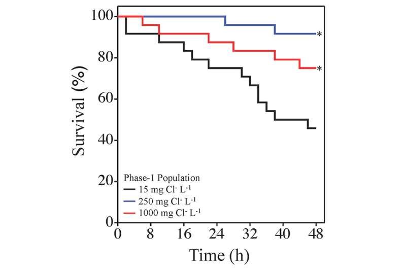 Zooplankton rapidly evolve tolerance to road salt
