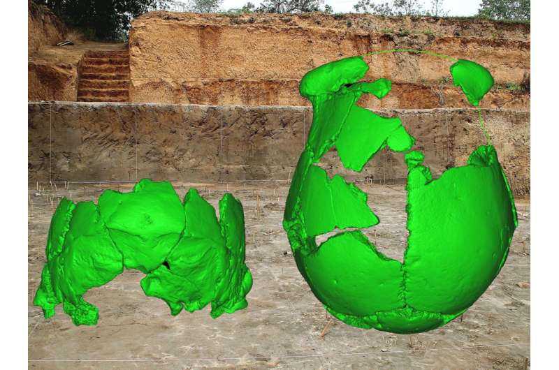 100,000-year-old human skulls from east Asia reveal complex mix of trends in time, space