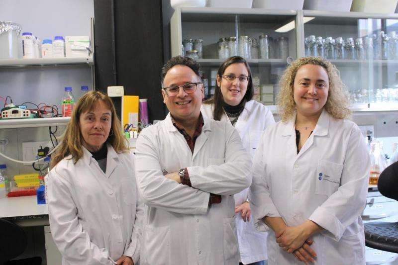 Researchers find a new human androgen receptor structure, key target for the treatment of prostate cancer
