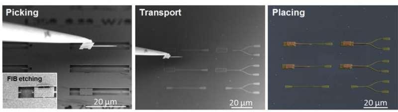 UNIST researchers develop silicon chip-based quantum photonic devices