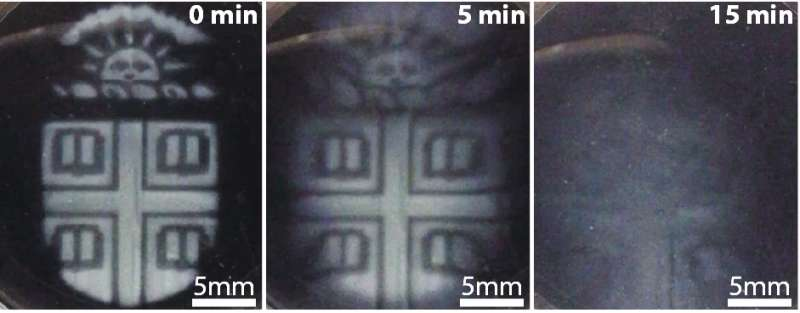 Researchers develop 3-D-printed biomaterials that degrade on demand