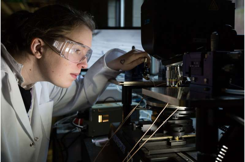 Researchers generate electricity from low-cost biomaterial