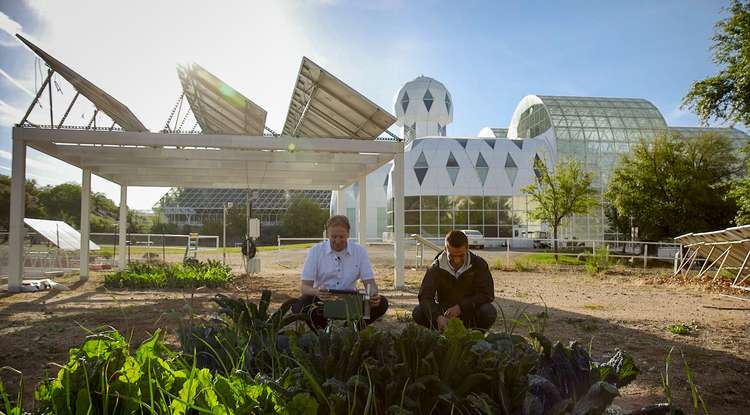 Researchers plant seeds to make renewable energy more efficient