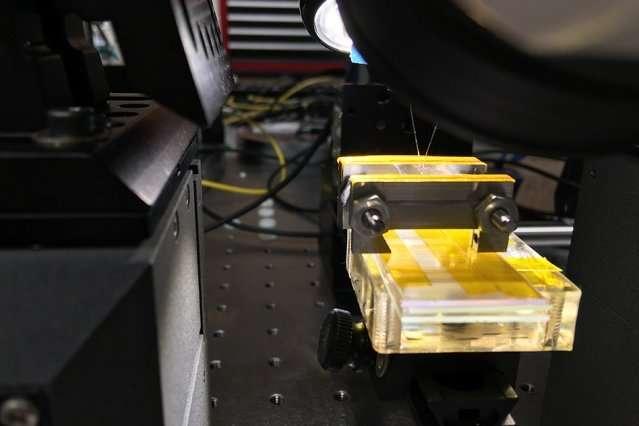 Researchers develop flexible, stretchable photonic devices