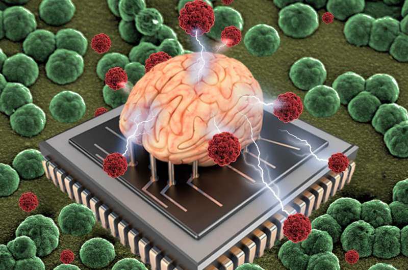 Researchers report better way to create organic bioelectronics