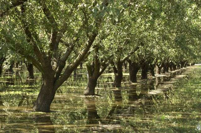 Researchers track groundwater loss during drought in California's Central Valley