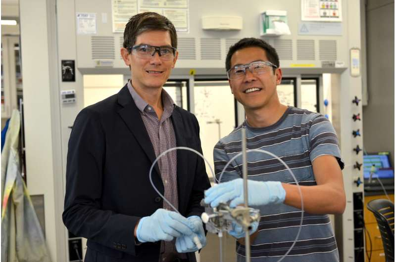 Discovery could lead to sustainable ethanol made from carbon dioxide