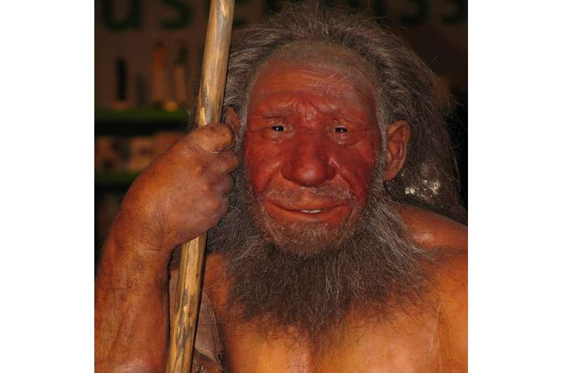 Neanderthals didn't give us red hair but they certainly changed the way we sleep