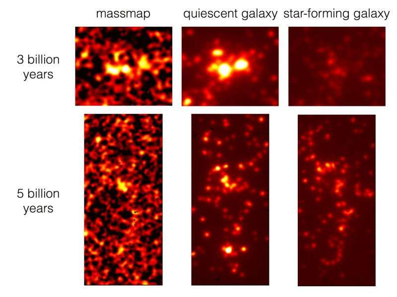 Tracing the cosmic web with star-forming galaxies in the distant universe