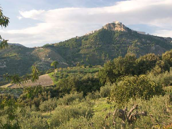 World's oldest Italian wine just discovered